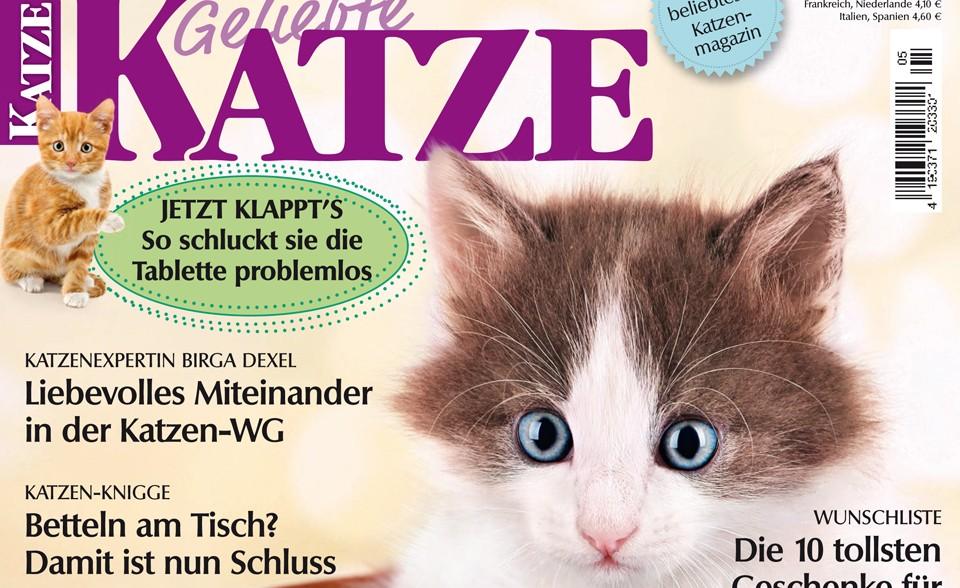Magazin Geliebte Katze